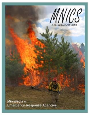 2013 MNICS Annual Report cover 2 x 15