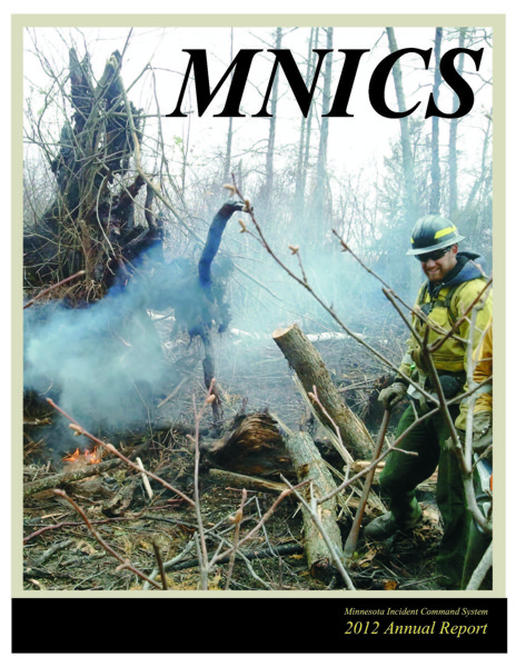 2012 MNICS Annual Report cover