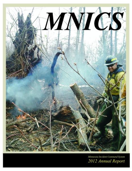 2012 MNICS Annual Report cover