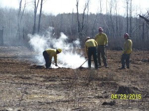 Firefighters work on hotspots on the Palsburg Fire.