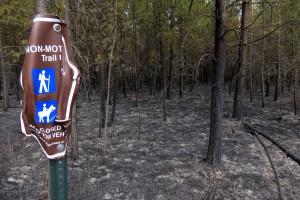 Palsburg Fire burn area and trail sign. Credit: Steve Mortensen, Julie Palkki