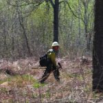 lake-hattie-fire-2016-firefighter-checks-for-hotspots