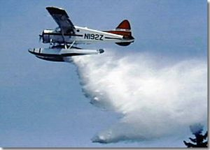 Beaver aircraft 2