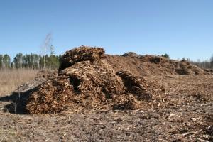 Palsburg Fire chip pile. Credit: Steve Mortensen, Julie Palkki