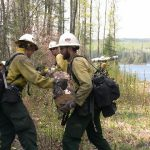 Firefighter swampers clearing trail