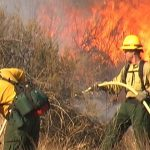 Prescribed fire PPE