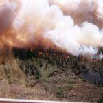 USFS prescribed burn