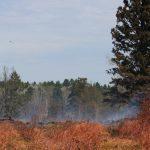 lake-hattie-fire-2016-smoke